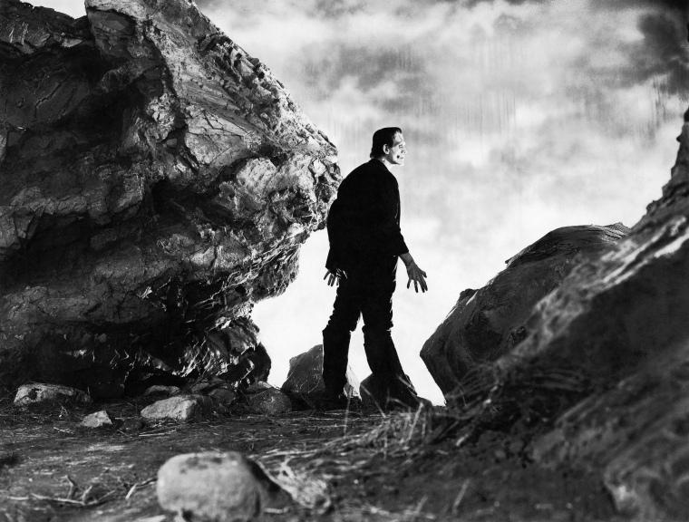Annex - Karloff, Boris (Frankenstein)_NRFPT_04