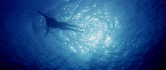 jaws-swim-scene-02