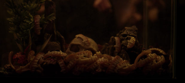 Screen Shot 2018-07-30 at 2.44.28 PM