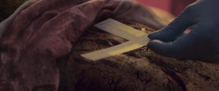 Hulu's The Act (2019) - Murder Scene Corpse