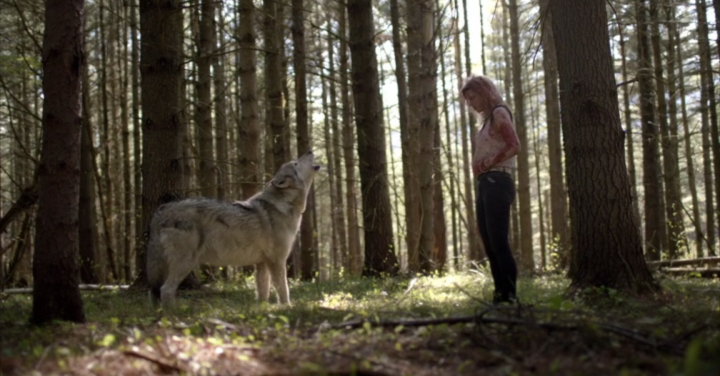 The Ranger (2019) - Wolf