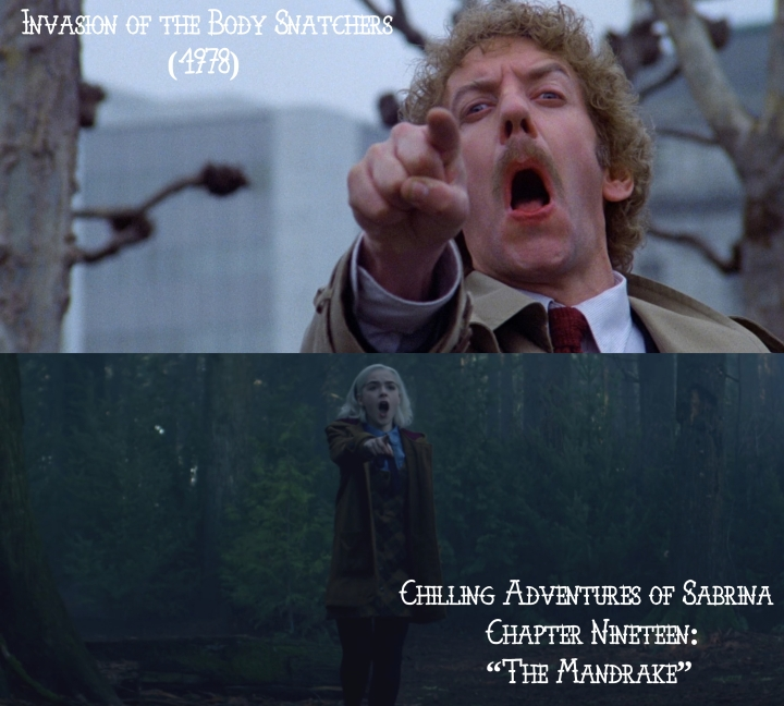 "Invasion of the Body Snatchers (1978) v. Chilling Adventures of Sabrina Chapter Nineteen: ""The Mandrake"""