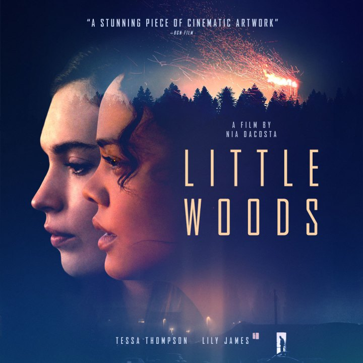 Father Son Holy Gore: Little Woods (2019)