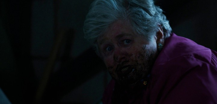 Father Son Holy Gore - Stranger Things - Old Woman Eating Fertilizer
