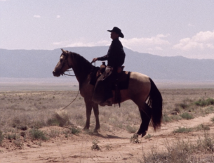 Father Son Holy Gore - Better Call Saul - Cowboy